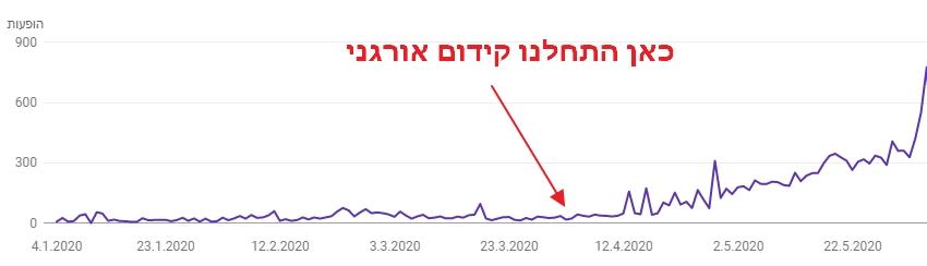 הגדלת נפח הופעות על ידי קידום אתרים אורגני בירושלים